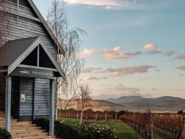 vineyard coal river valley