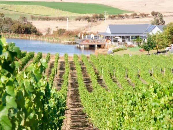 winery in Richmond Tasmania